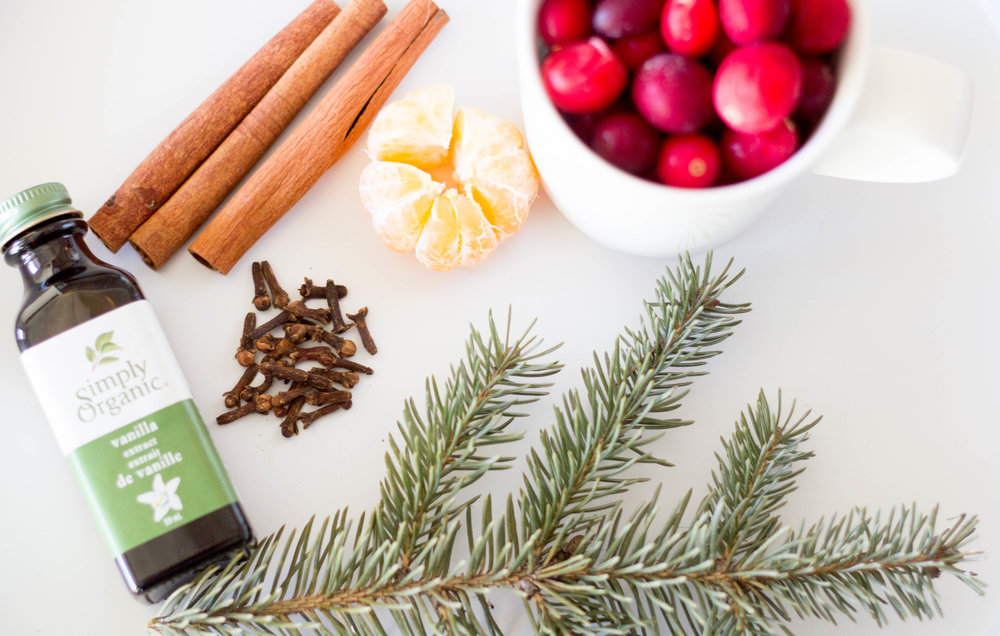 vanilla extract | cinnamon sticks | mandarin orange | whole cloves | cranberries | spruce tree sprig
