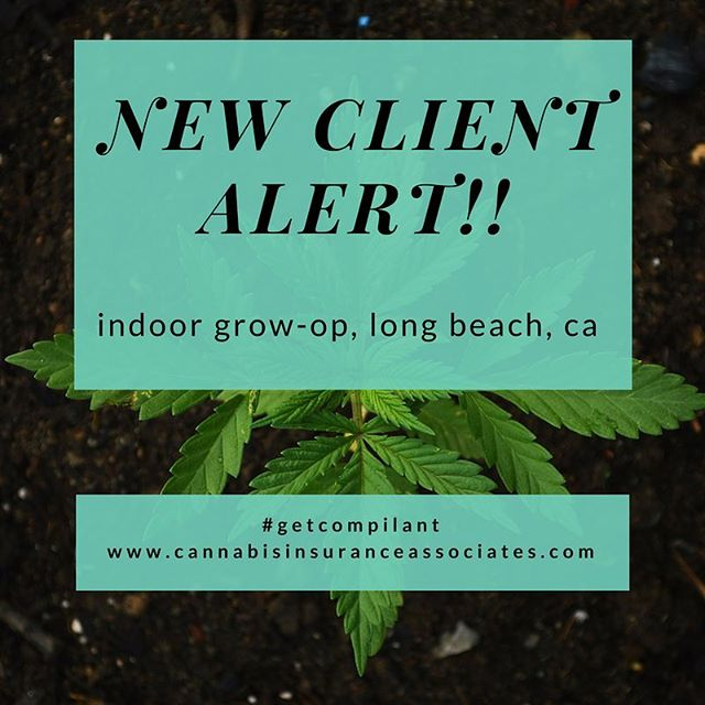 New client alert! 8,000 sq ft grow-op in Long Beach. CA, time to get compliant #whosnext