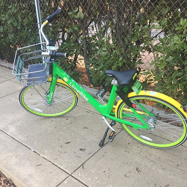 Anyone else seeing these all around your town? #limebike