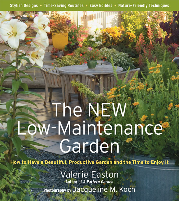 new_low_maintenance_garden.jpg