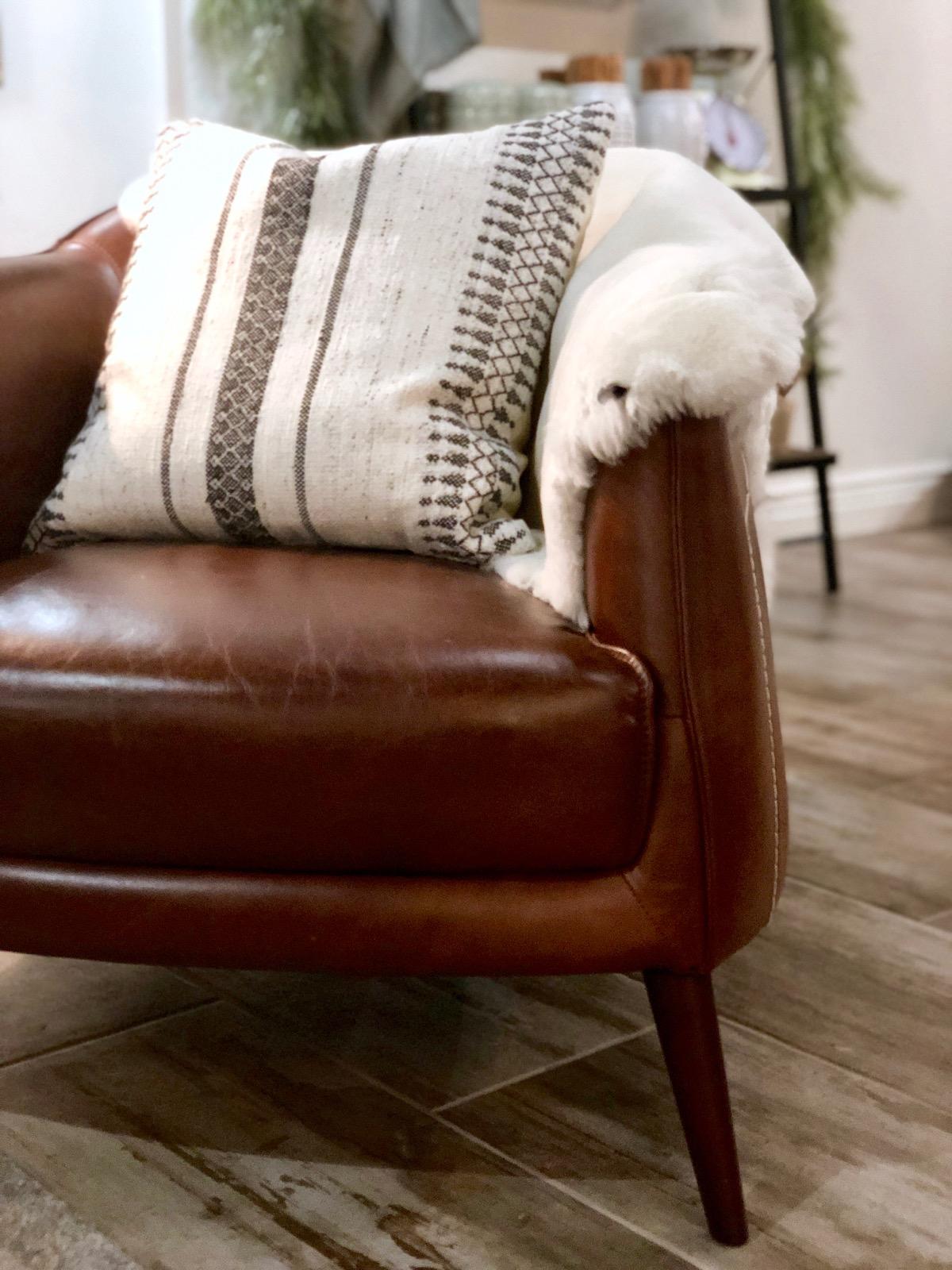 leather-chair-omaha-jaipur-sheepskin-amethyst-home