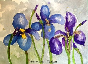 quick tips to improve the vase life of irises