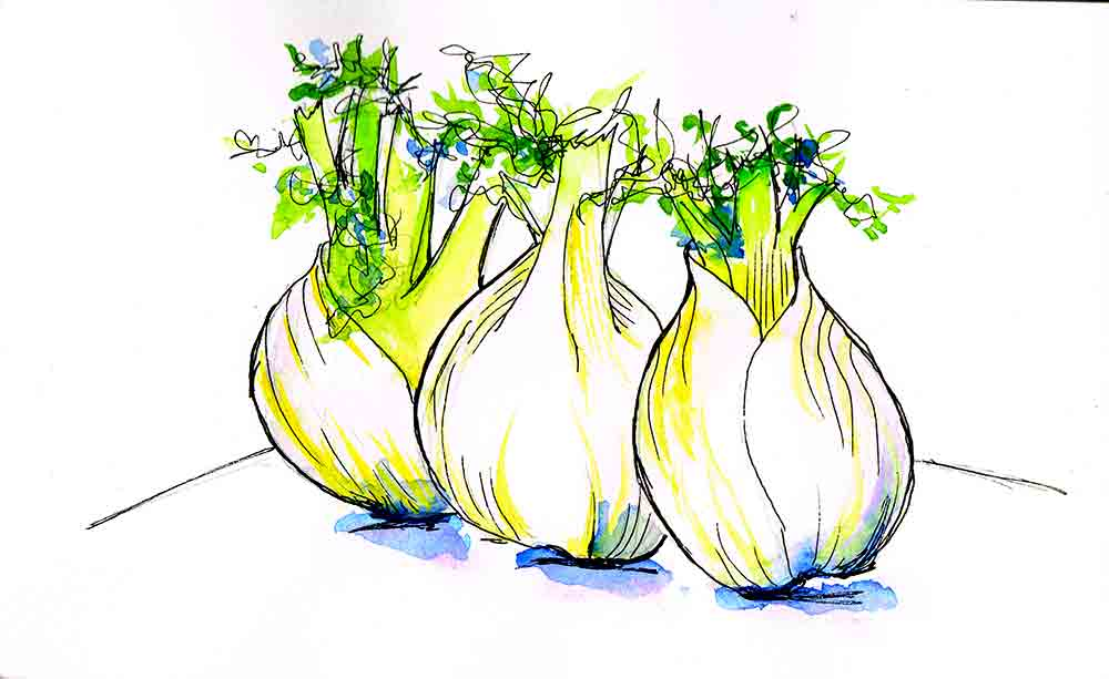 Kitchen-ink-no-1-fennel-kw.jpg