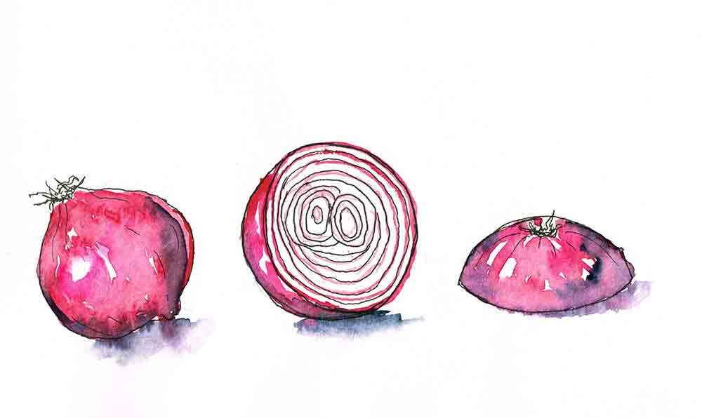 Kitchen-ink-no-9-red-onion-kw.jpg