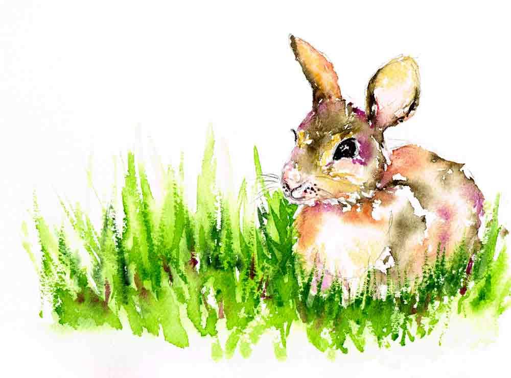 Little-critters-no-7-bunny-kw.jpg