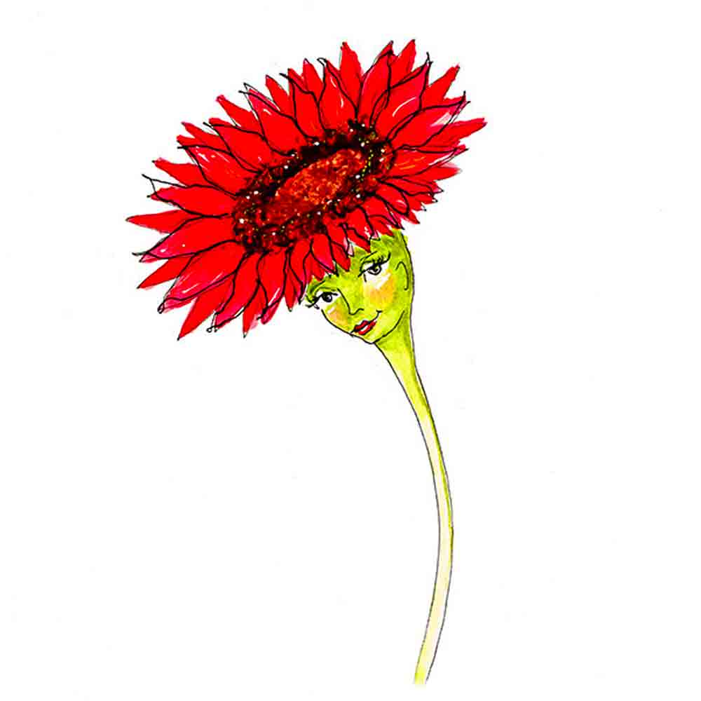 Flower Face No 12 Gerbera