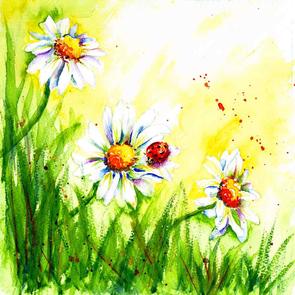 Bugs-Blooms-no-5-Daisy-Trio-kw.jpg