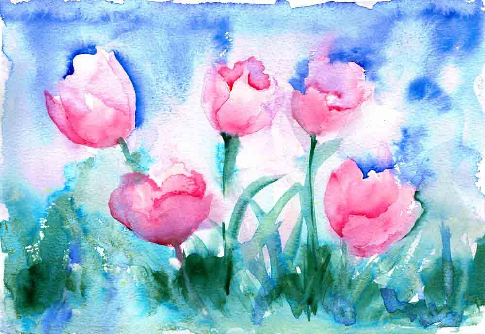 Tulips-no-2-pink-field-kw.jpg