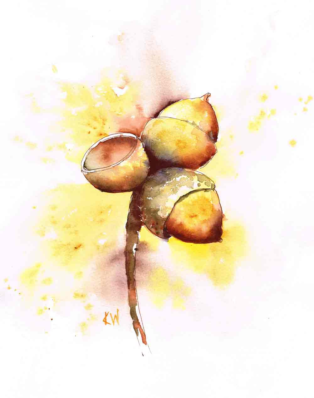 acorns-kw.jpg