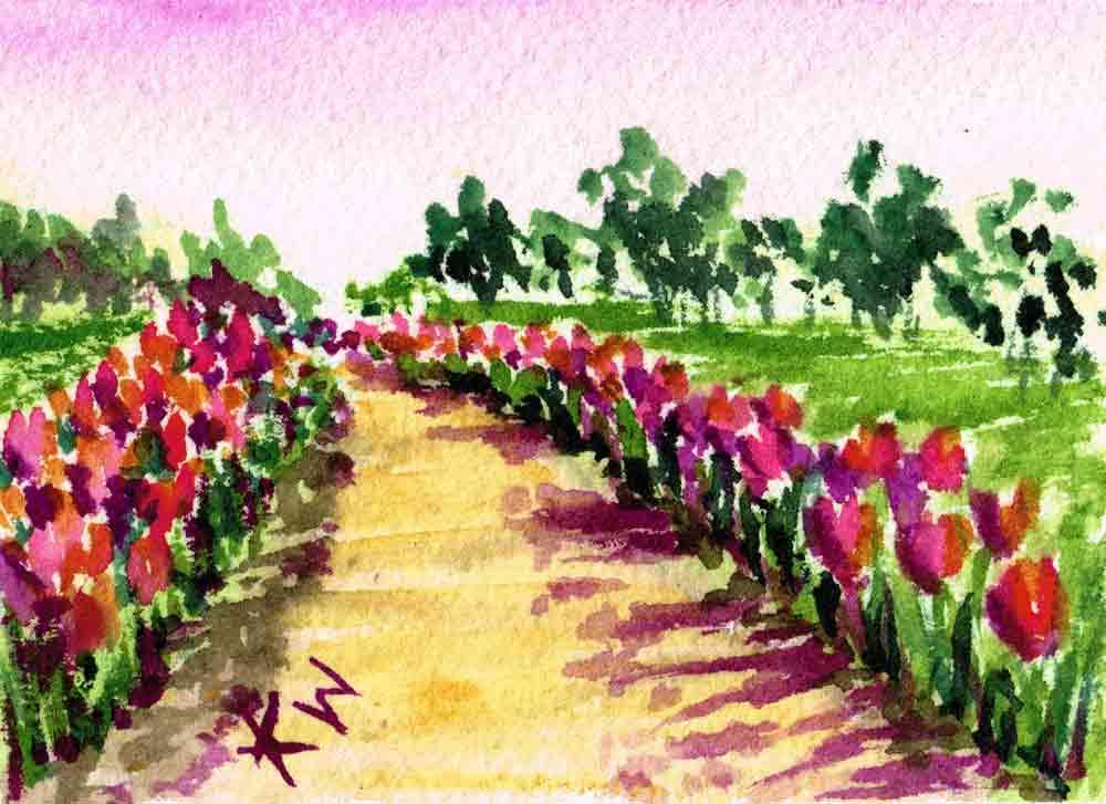 "Garden Path no 9 Tulip Path (ACEO Watercolour on Paper, 2.5""x3.5"")"