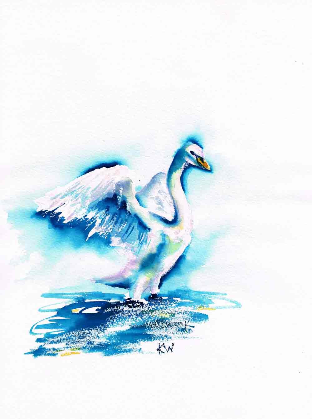 "Dramatic Birds no 9 Helio Swan (Watercolour on paper, 9""x12"")"