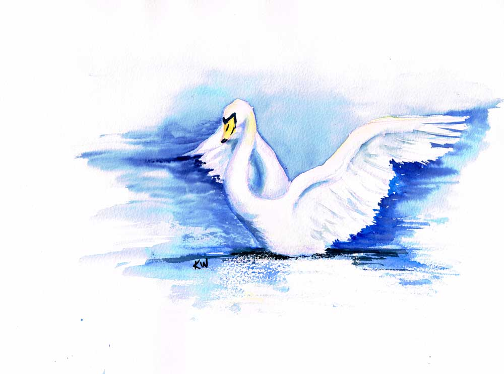 "Dramatic Birds no 5 Swan (Watercolour on Paper, 9""x12"")"
