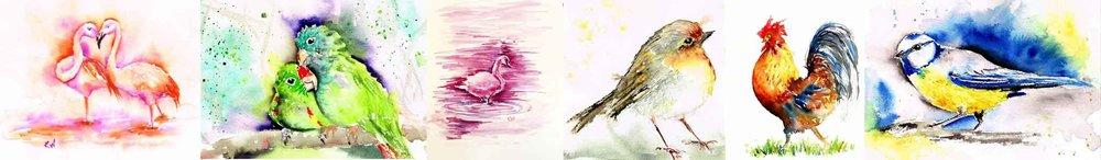 bird-strip-kw.jpg