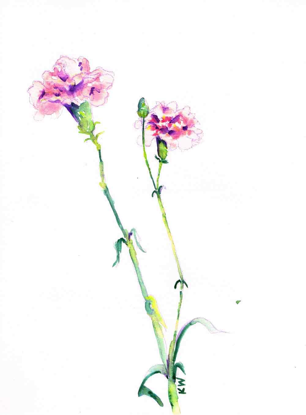 Fresh-flowers-scan-no-5-kw.jpg