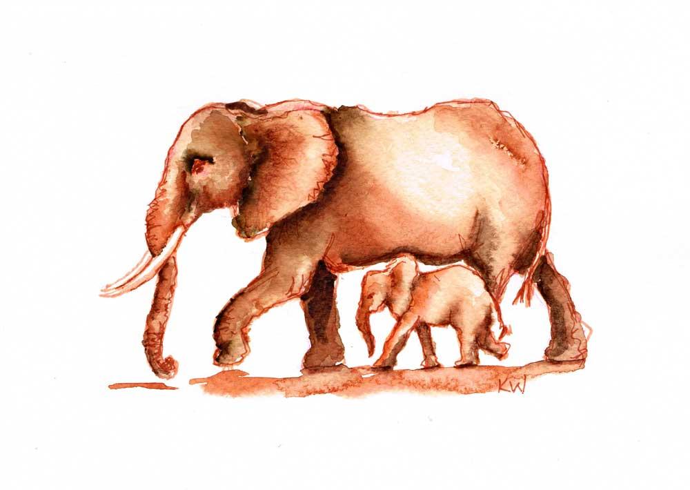 elephant-5-kw.jpg