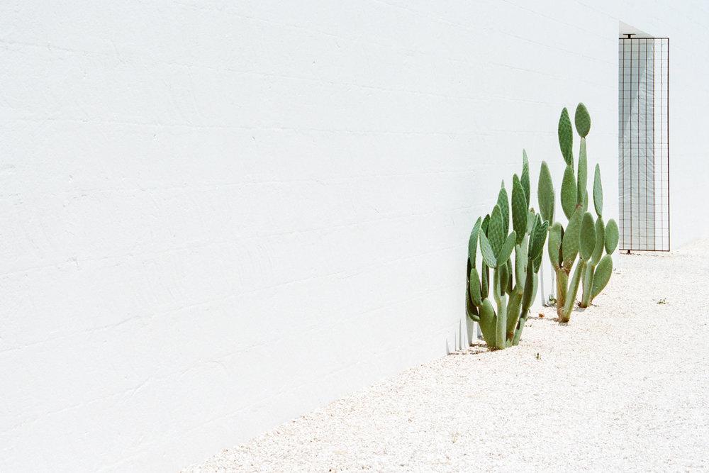 Masserias in Puglia Morgane Erpicum