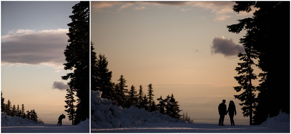 Amazing Day Photography - Langely Wedding Photographer - Snow Engagement Session - Mount Seymour Engagement - Winter Engagement Session - North Vancouver Engagement Session  (10).jpg