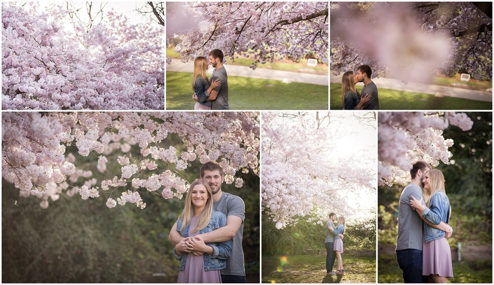 Amazing Day Photography - Cherry Blossom Engagement Session - Queen Elizabeth Park Engagement Session - Vancouver Engagement Photographer  (1).jpg