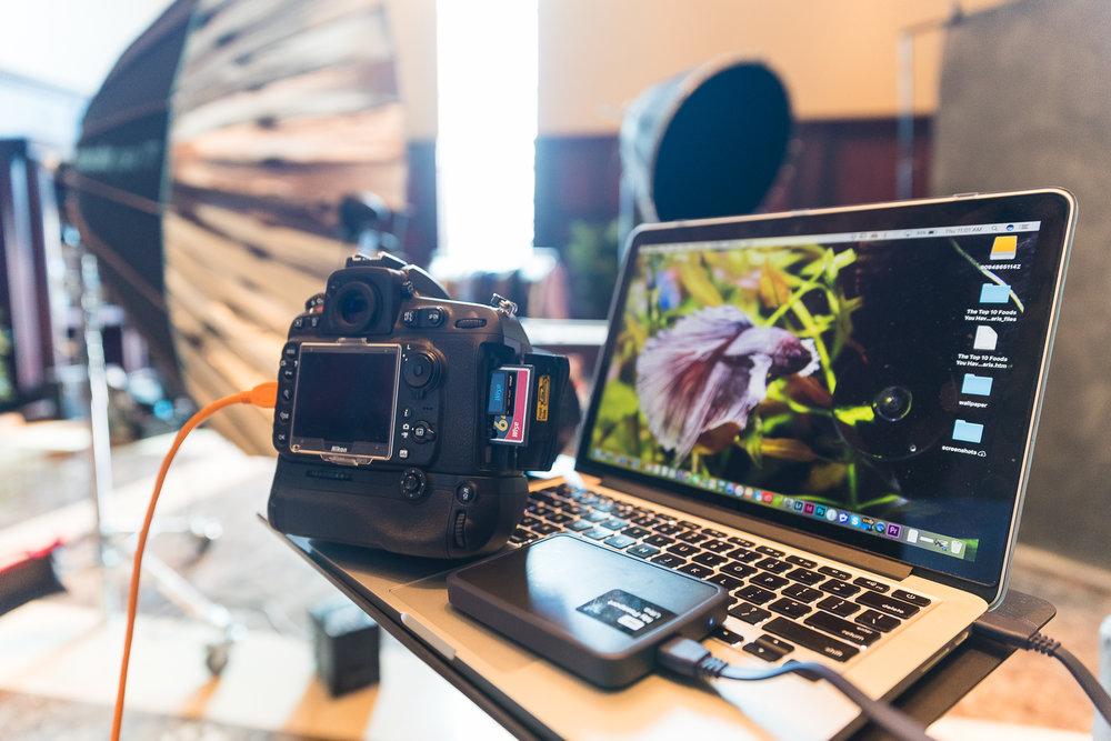 Photo by Bryan Gateb - www.bgateb.com | photos.bgateb.com | @bgateb
