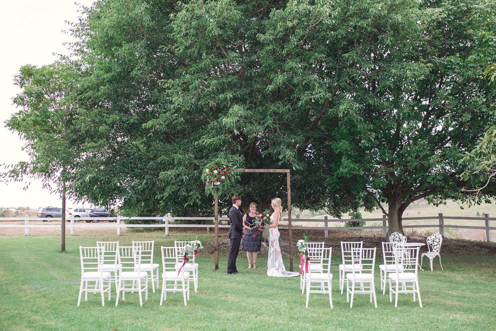 Fig tree ceremony -