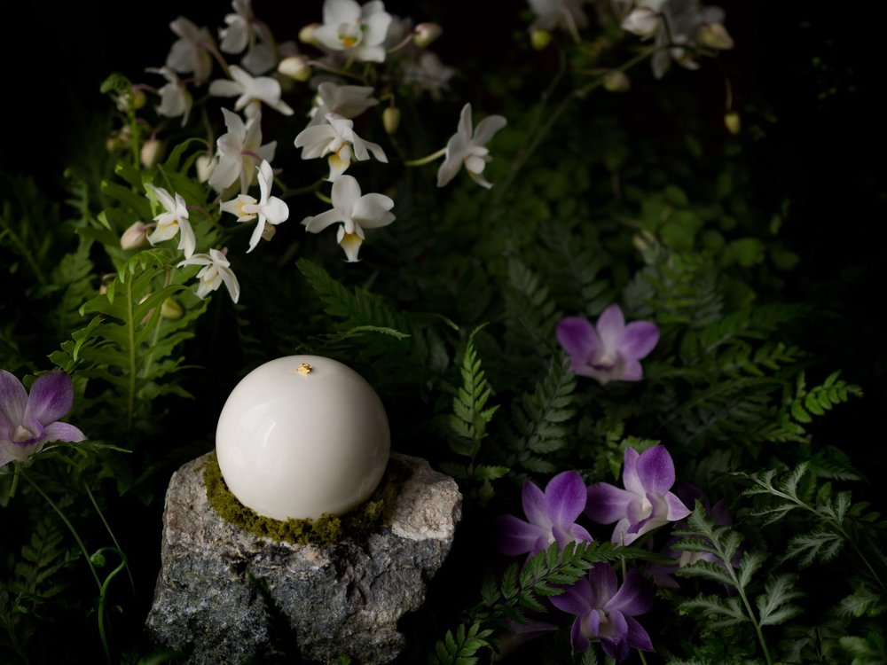 Jasminum Grandimango fot. Cukiernia Lukullus