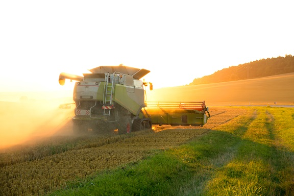 Harvest in the sunset