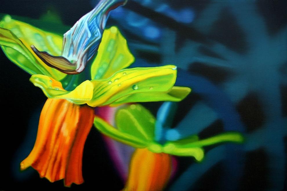 'Daffodil' oil on canvas - 60x90cm