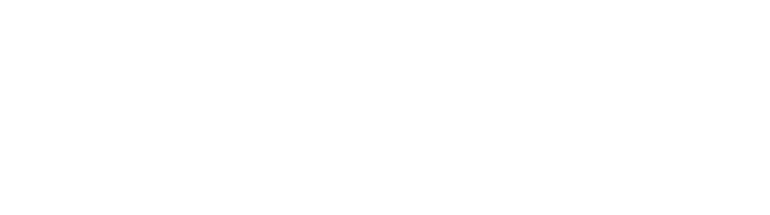 Essential International Artists