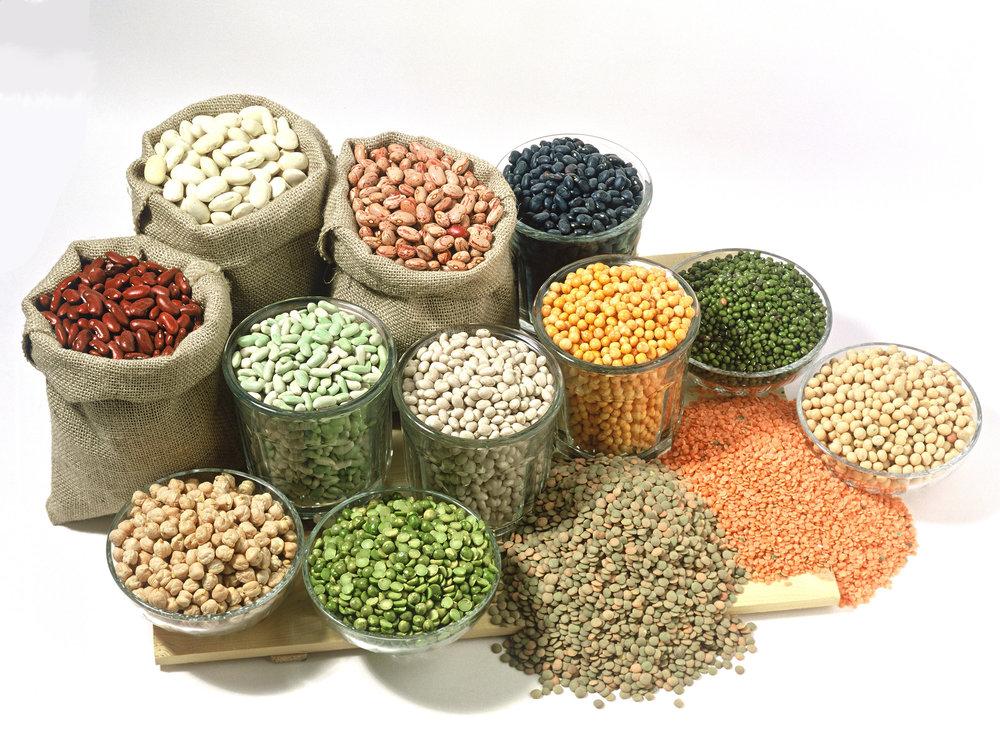 legumes&grains.jpg