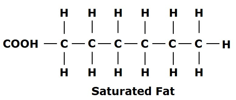 Figure 1: Notice each Carbon (C) has a single bond either attaching it to another Carbon or Hydrogen (H) atom, when all these bonds are full, it is a saturated fatty acid.