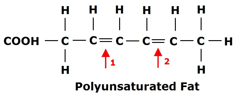 Figure 2:  Notice there are Carbons (C) in this chain that are missing a Hydrogen (H) and can be seen to have a 'double bond' to another Carbon. There is more than one of these double bonds making this a poly-unsaturated fatty acid (PUFA). If there was only one it would be a mono-unsaturated fatty acid (MUFA).