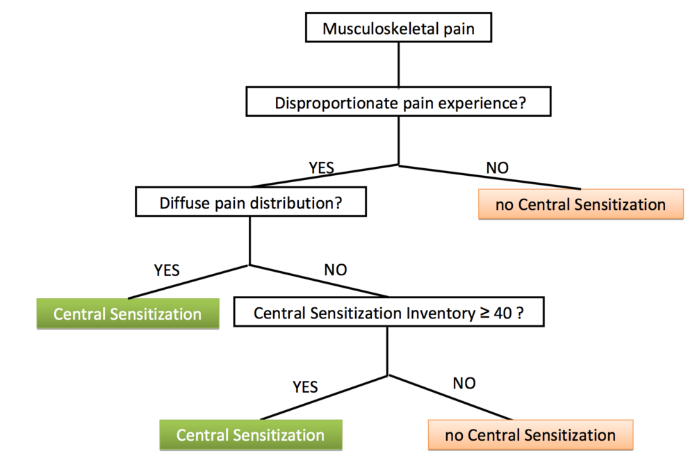 Figure 1:  Algorithm for the classification of central sensitisation pain - Nijs. et al. (2014).