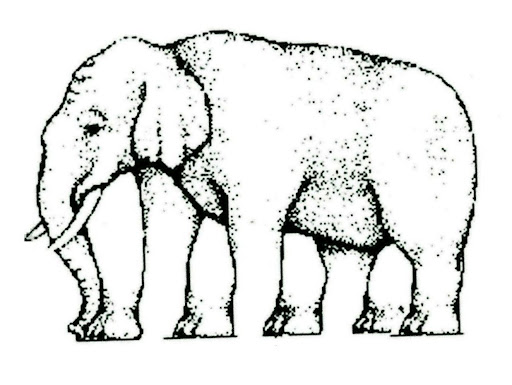 How many legs does this elephant have?  If the image we receive with our eyes does not match our expectation of what our brains think we 'should' see then it creates an 'optical illusion'. Optical illusions demonstrate how easy it is to 'trick' our nervous system and shows vision to be an 'output' of the brain, not merely an input from the eyes as many may believe.