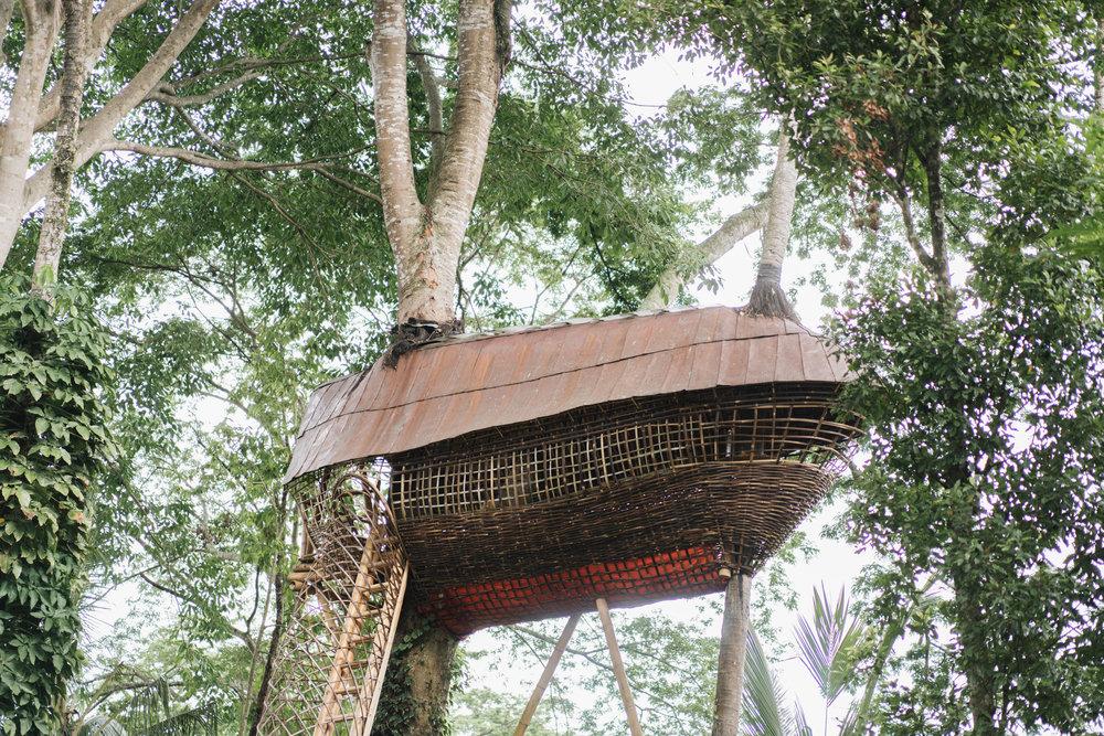 BambuIndah (1 of 1)-20.jpg