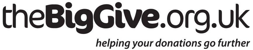 the-big-give-logo.jpg