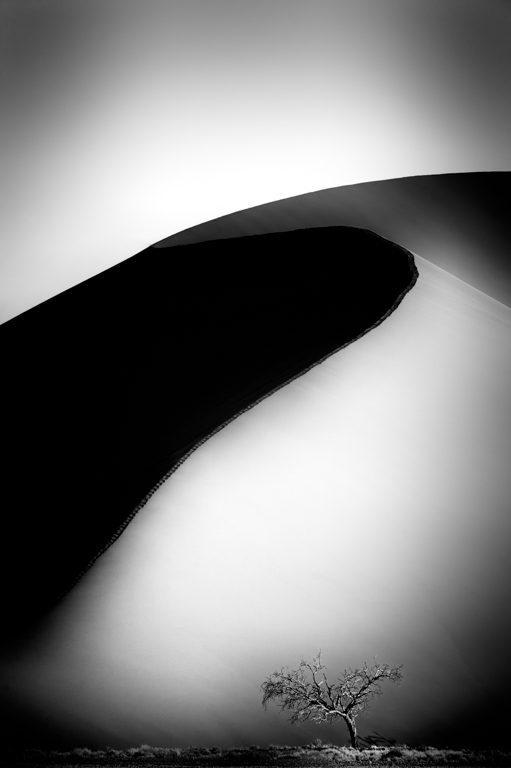 Light & Shadow, Dune 45 Buy this Print