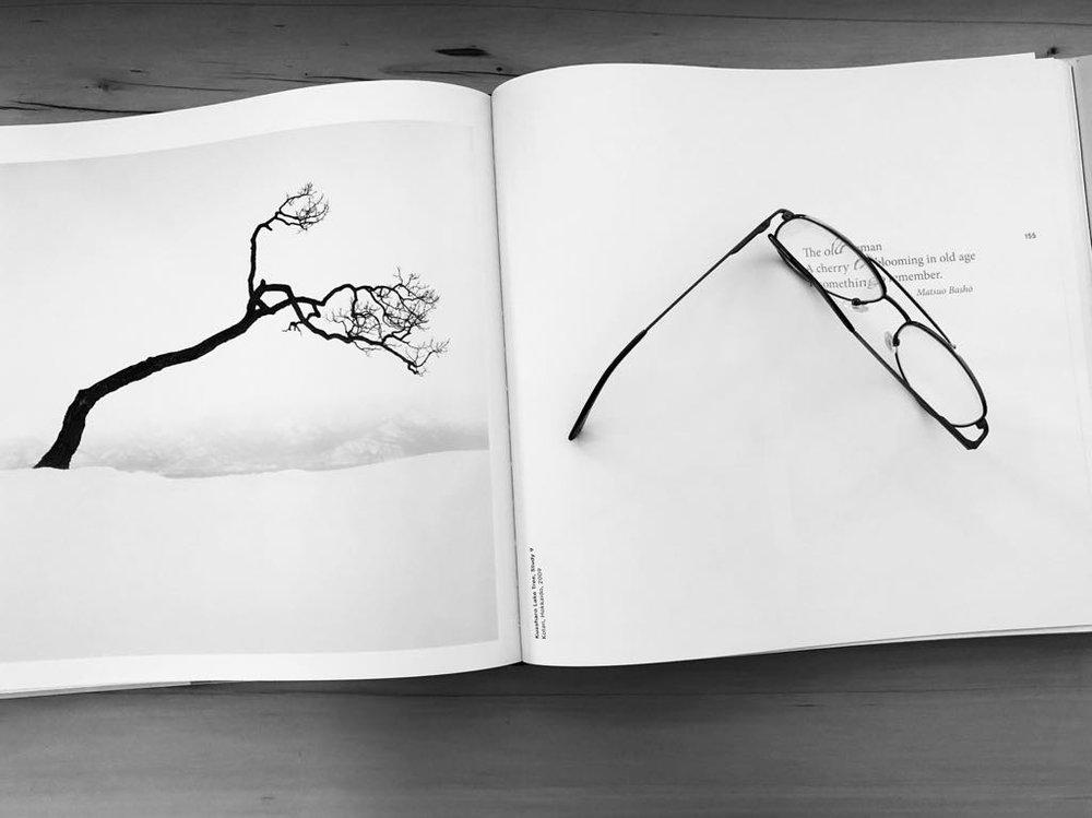 Forms of Japan, Kussharo Lake Tree , Study 9 ,