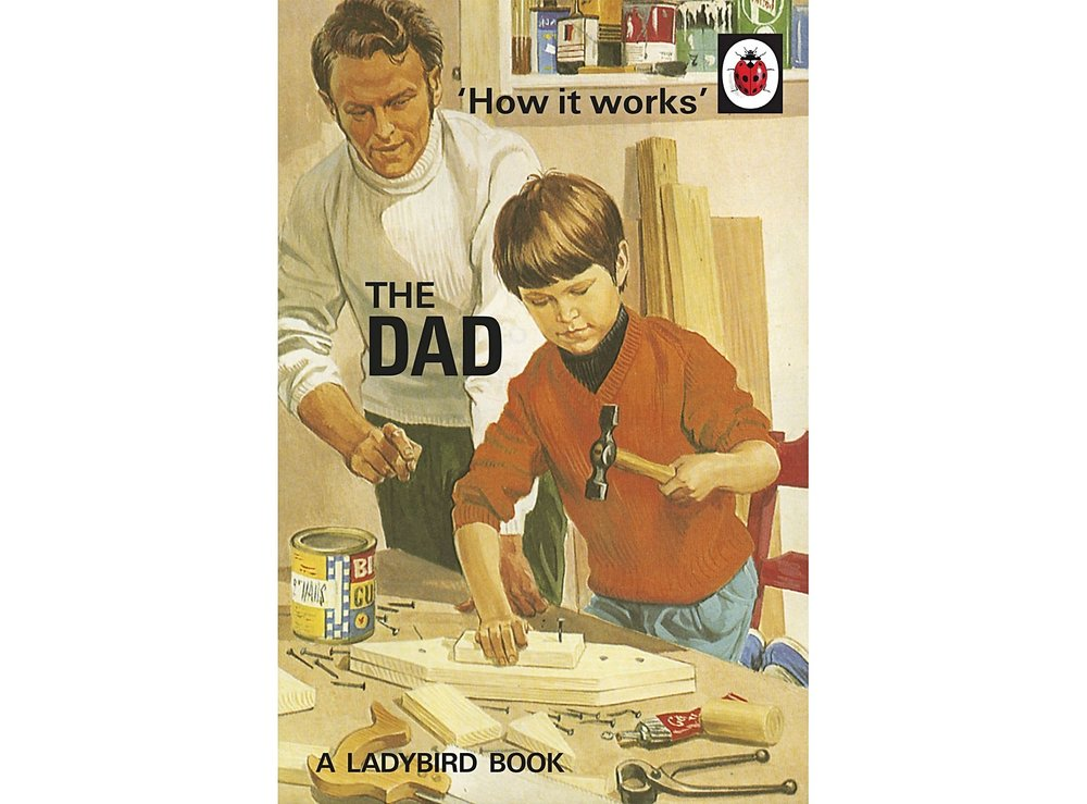 How It Works: The Dad by Ladybird Books £6.99 at Oliver Bonas