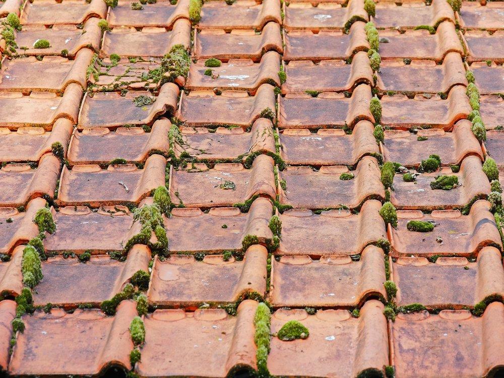 old roof.jpg