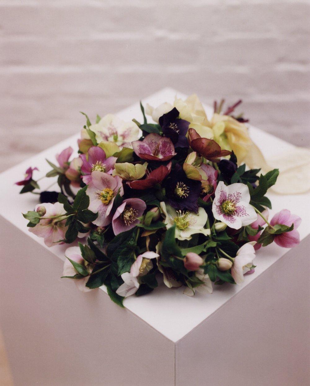 Hellebore bouquet.jpg