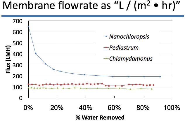 Microalgae Graph.png