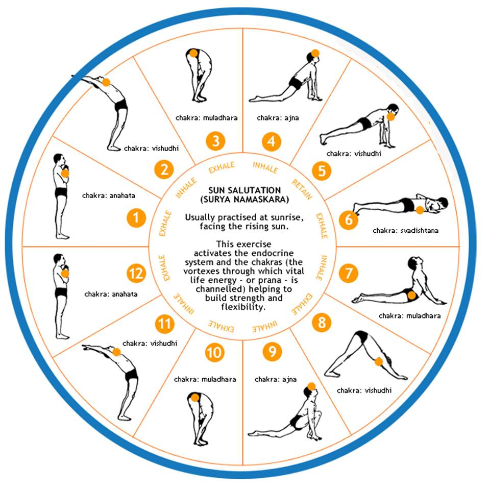 The Sun Salutation flow