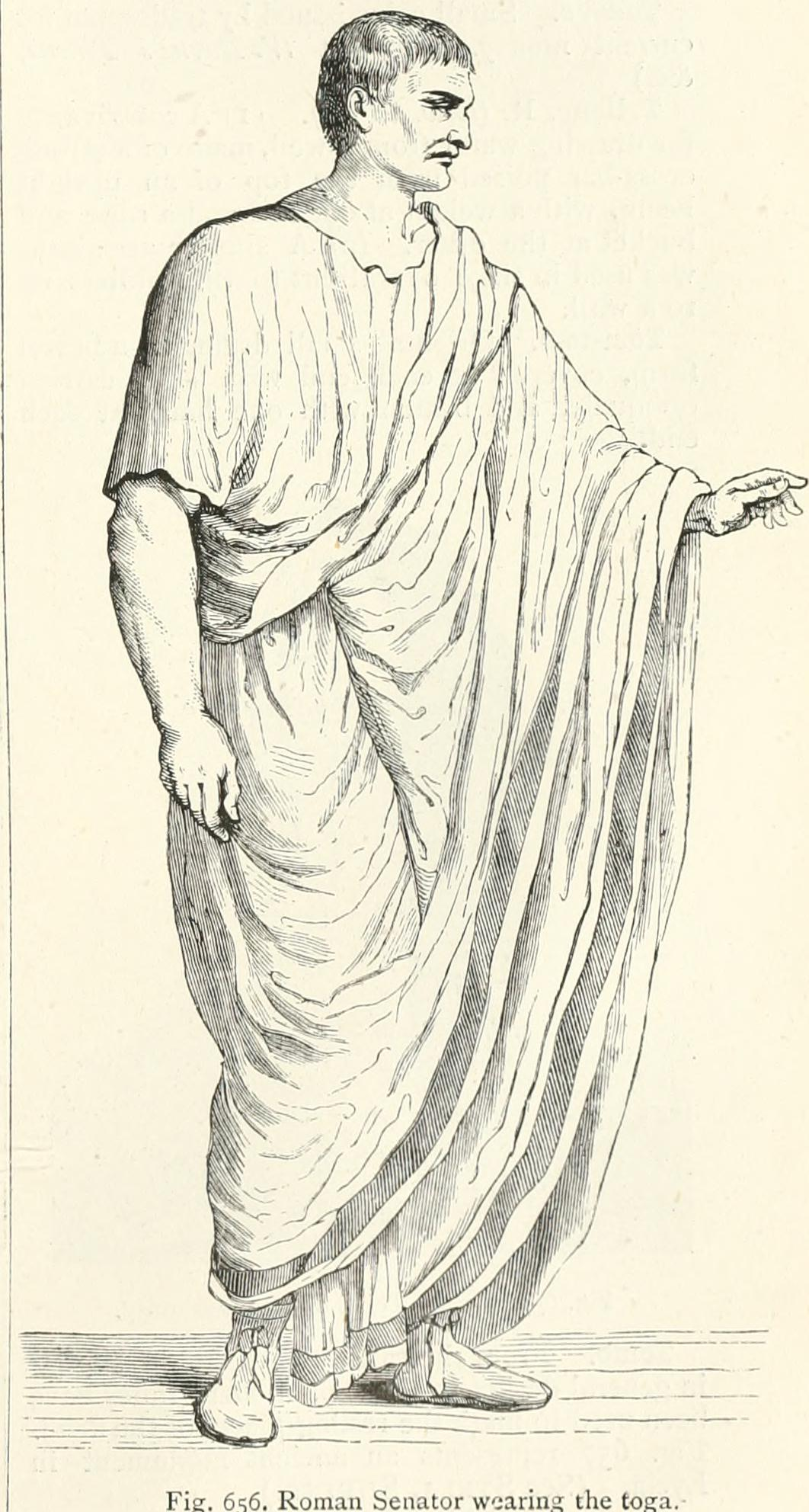An illustration of the toga candida by John William.