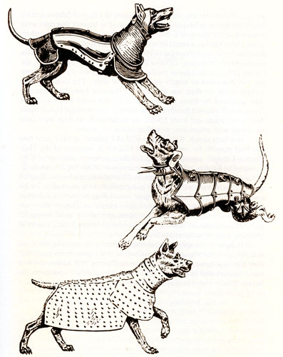 16th century armoured dogs: from 'The New Dog Encyclopedia'