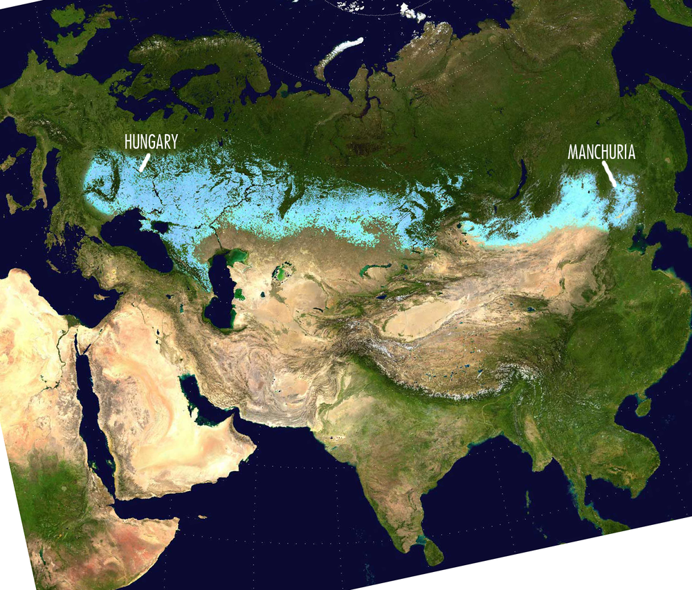 Mdf (Contributing author on Wikipedia Commons). Eurasian Steppe Belt (26 May 2009). Public Domain.