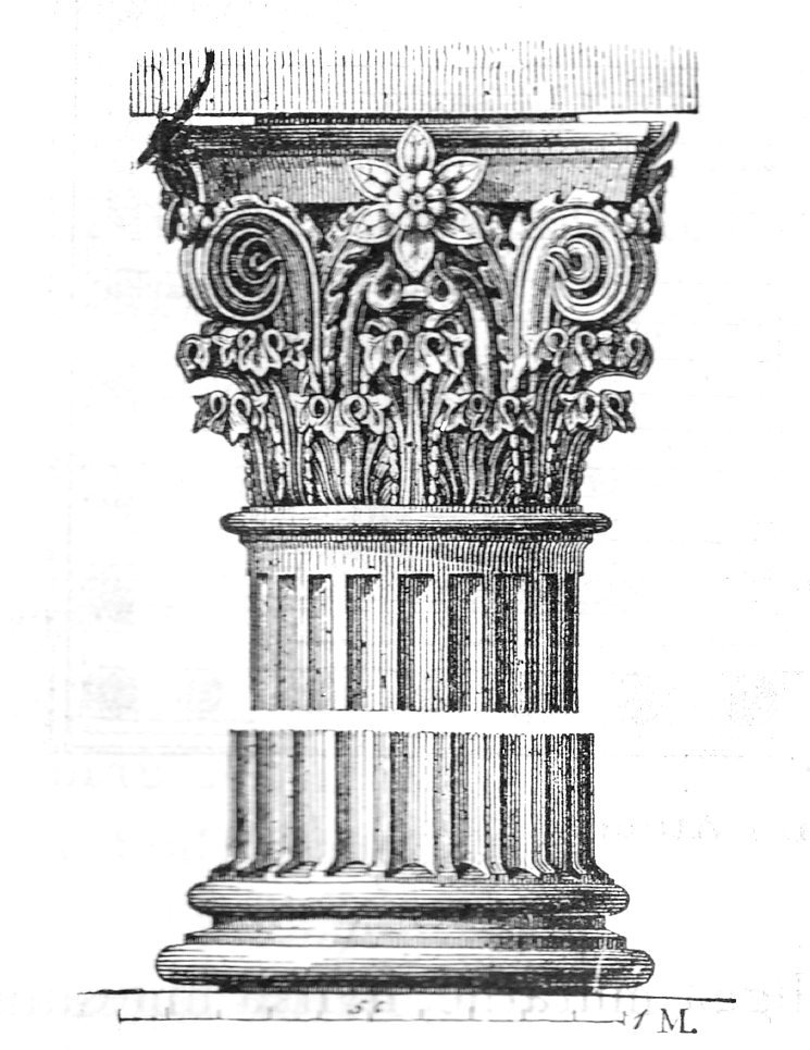 Ernst Wallis et. al.,  Capital of Corinthian Order , 1 January 1875. An illustration of a  Corinthian Capital with Acanthus Leaves against a white background.