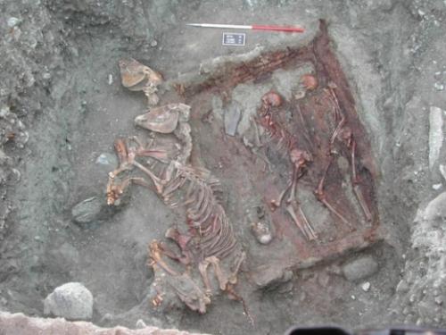 Universitat Autònoma de Barcelona (UAB), Scythian warrior tombs found in the Altai region of Mongolia , 12 November 2012.