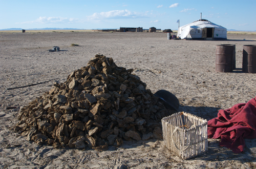 Dung fuel with traditional gathering basket, western Mongolia