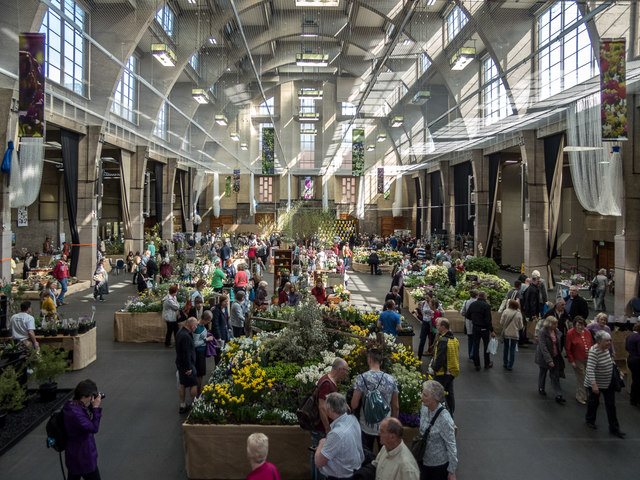 Christine Matthews,  Royal Horticultural Hall, London , April 2016. A crowded orchid show displaying plants and flowers in a building with high ceilings and wide windows.