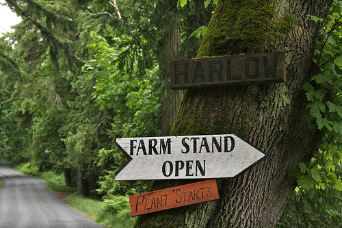 farm stand sign